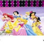 Aluguel-Decoração-Princesas-Disney-Tema-Completo