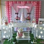 Aluguel Decoração Chá de Bebê Tema Menina Rosa e Marrom